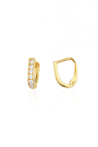 Earrings Hoops Stones