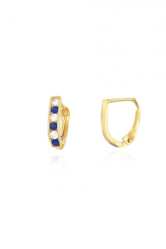 Earrings Hoops Stones Blue