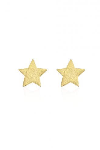 Σκουλαρίκια Ματ Αστέρι Y