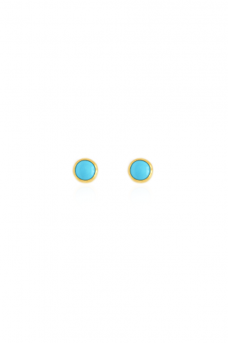 Earrings Turquoise Chic