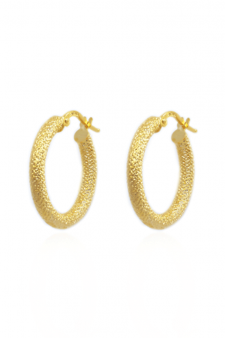 Earrings Hoops Glory