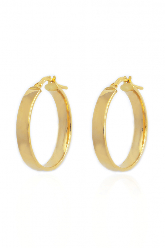 Earrings Hoops Bold Rec Big
